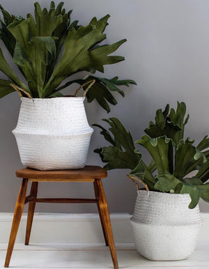 White Seagrass Basket