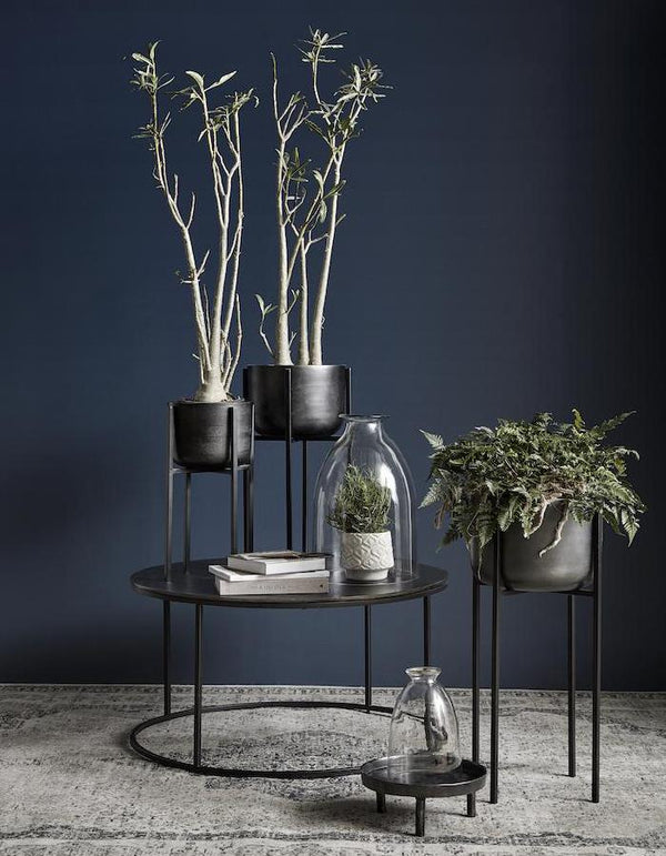 Blackened Planter On A Tall Stand  PRE ORDER FEBRUARY
