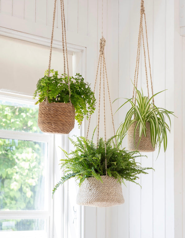 Hanging Seagrass Plant Pot
