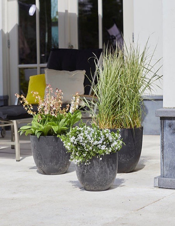Artstone Planters in Three Sizes  PRE ORDER FOR FEBRUARY