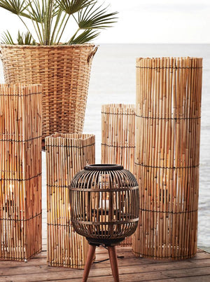 Set of Two Tall Round Reed Lamp
