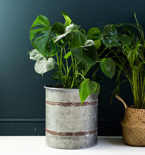 Large Distressed Metal Banded Planter