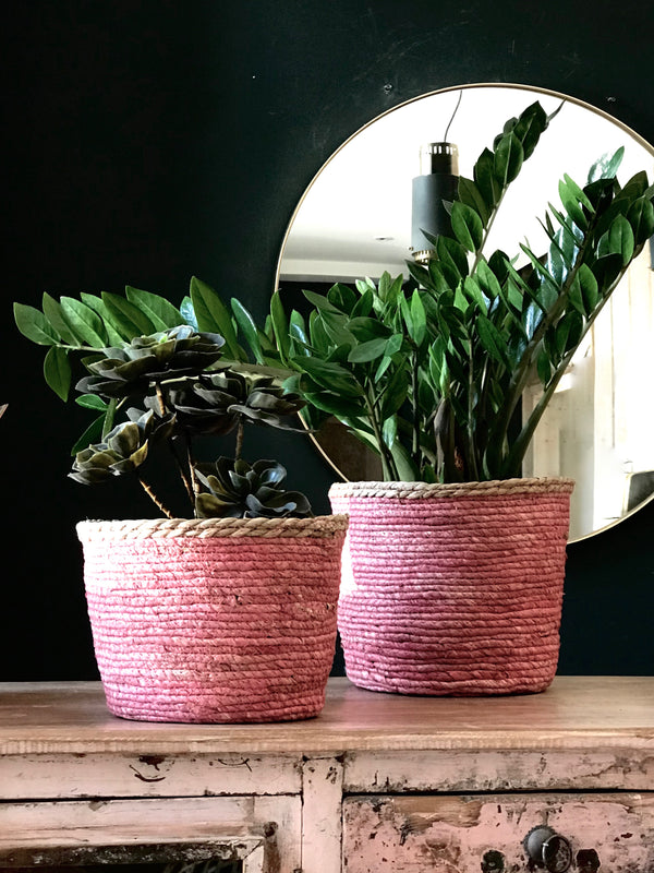 Soft Pink Edged Baskets Or Planters