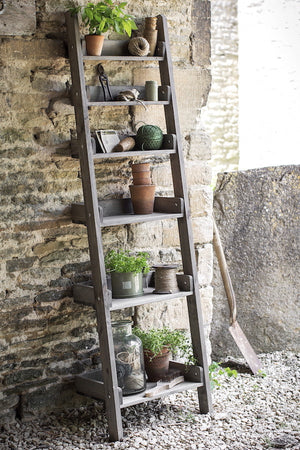 Provence Ladder Shelf - The Forest & Co.