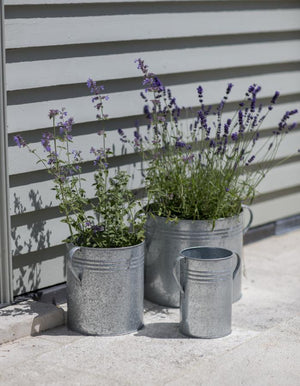 Set Of Three Galvanised Planters PRE ORDER OCTOBER