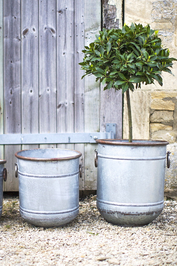 Metal Planters Available In Three Sizes Pre order for June