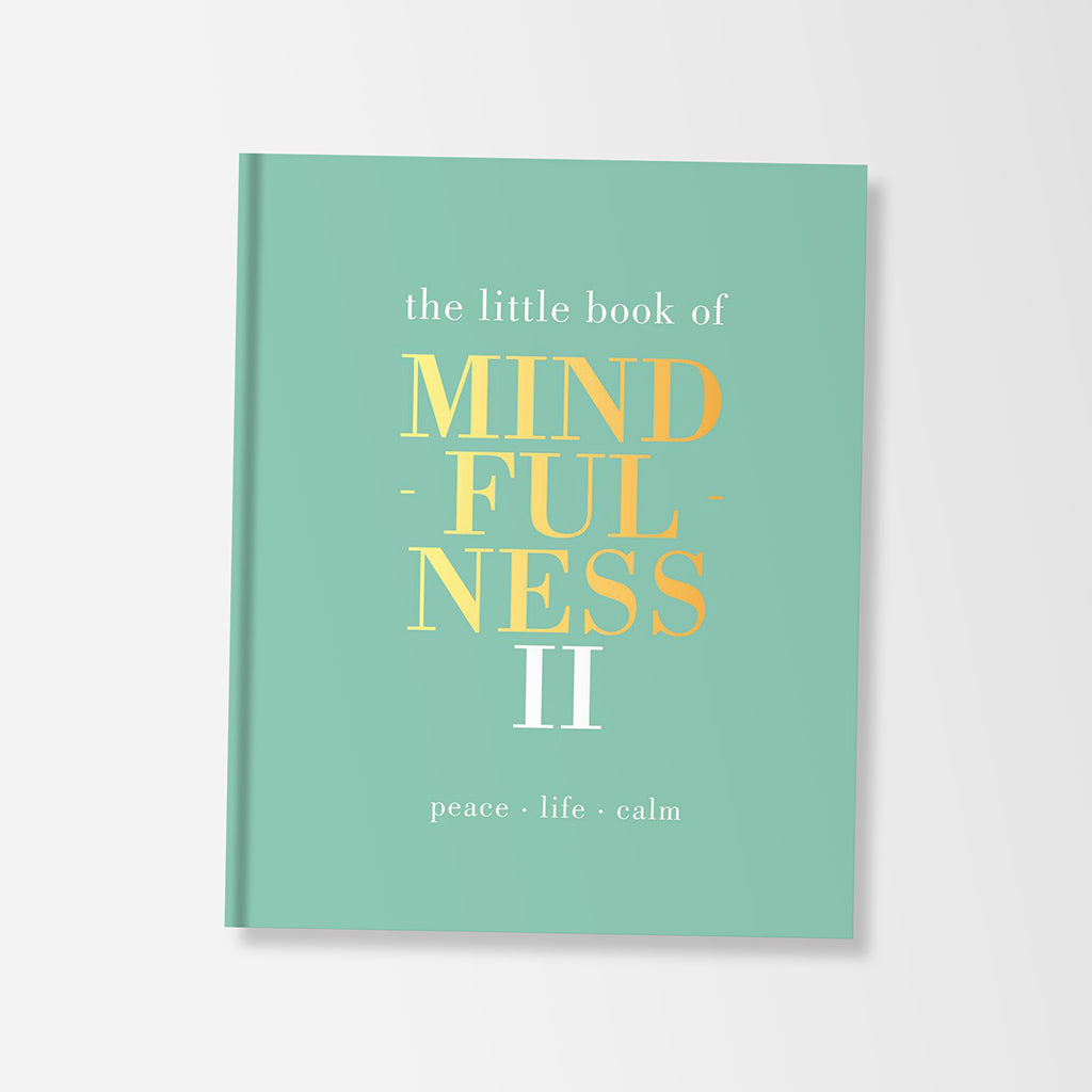 Little Book Of Mindfulness II Book By Alison Davies