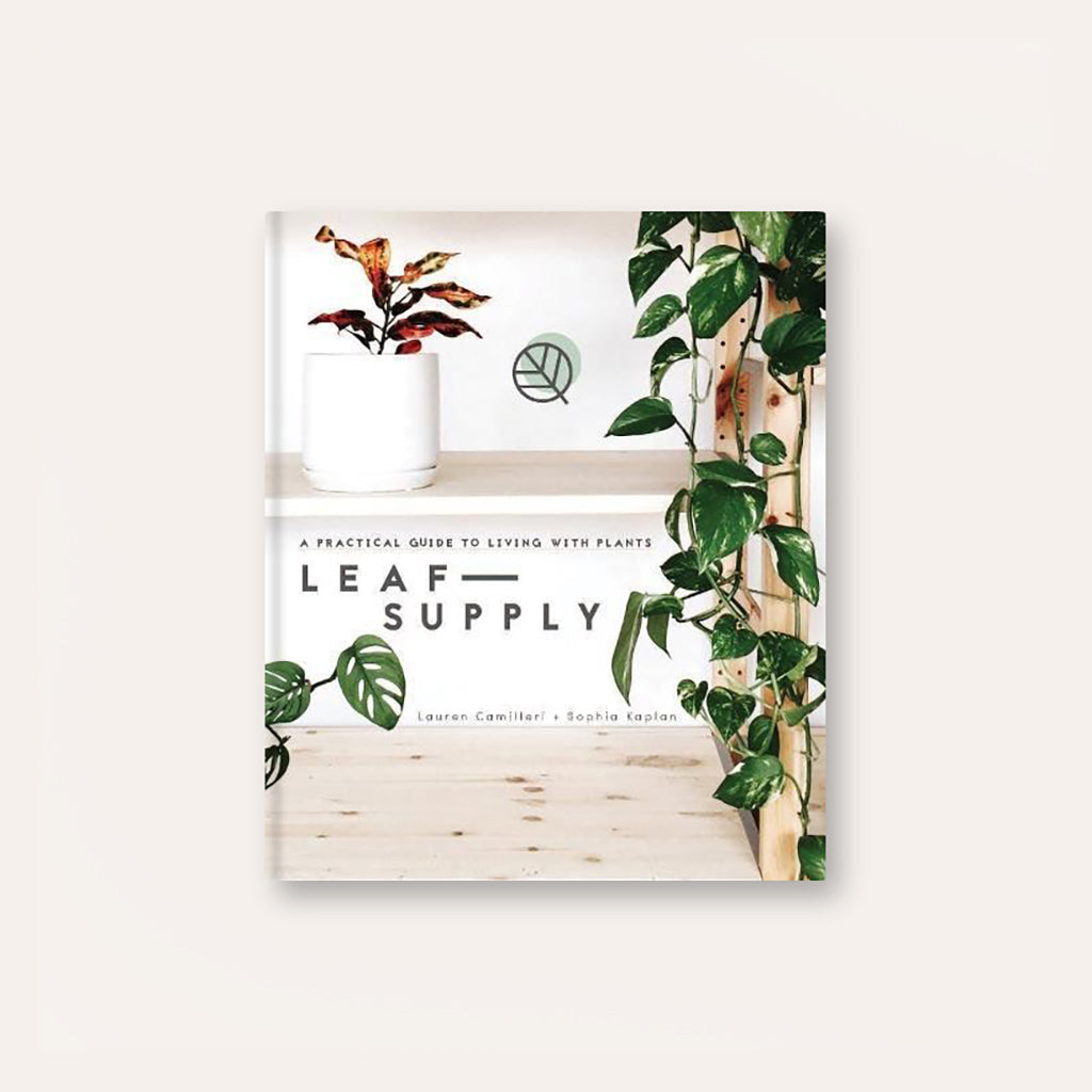Leaf Supply: A Guide To Keeping Happy Houseplants - Buy online or shop in the Jo & Co Lifestyle, Home and Furniture store in Wadebridge, North Cornwall, UK