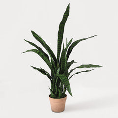 Faux Sanseriveria Pot Plant