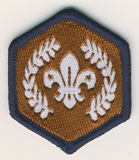 Beaver Bronze Chief Scout Award