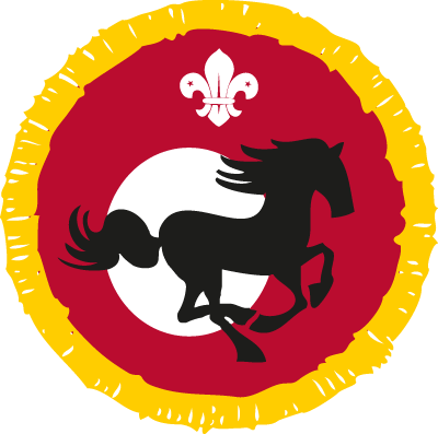 Cub Equestrian Activity Badge