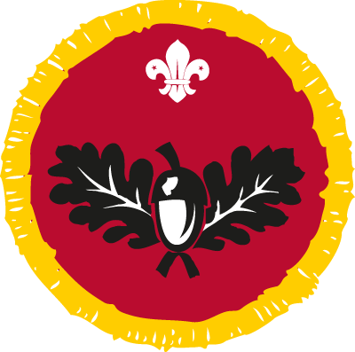 Cub Naturalist Activity Badge
