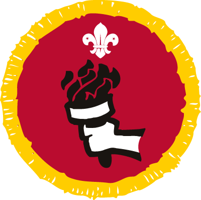 Cub Sports Enthusiast Activity Badge