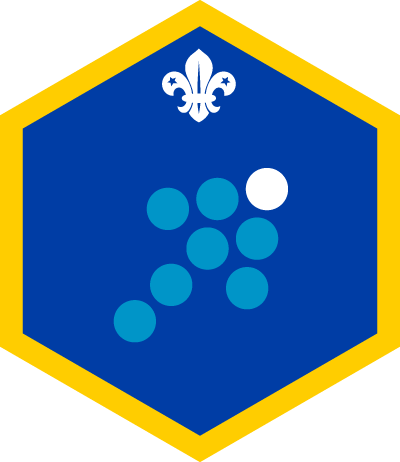 Cub Team Leader Challenge Badge
