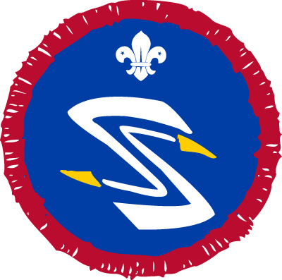 Scout Air Spotter Activity Badge