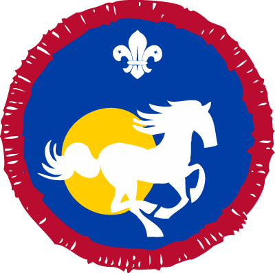Scout Equestrian Activity Badge