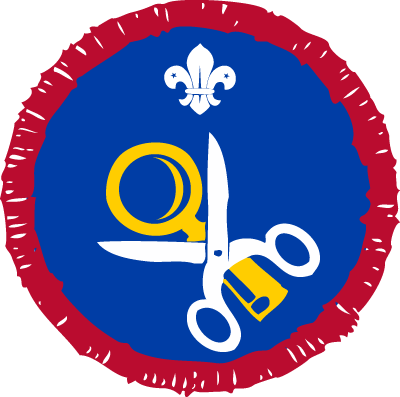 Scout Hobbies Activity Badge