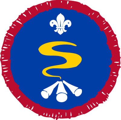 Scout Survival Skills Activity Badge
