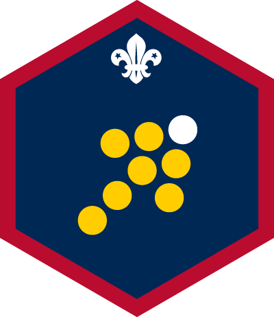 Scout Team Leader Challenge Badge