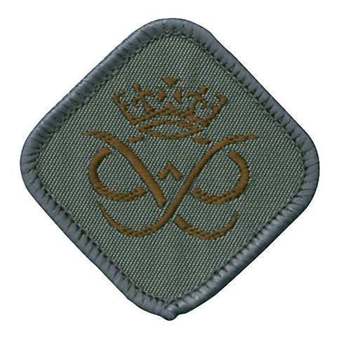 DofE Bronze Badge