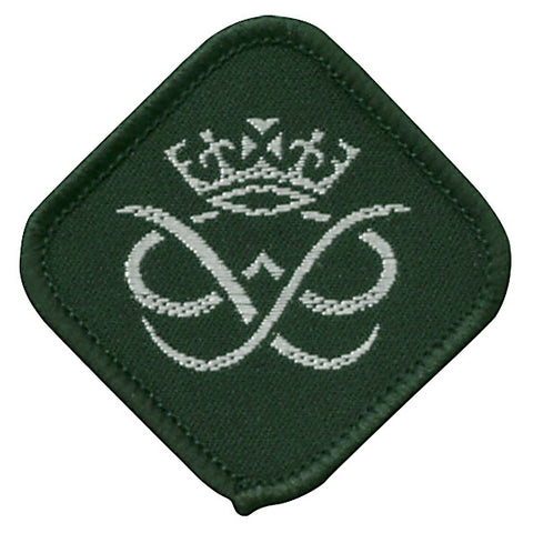 DofE Sliver Badge