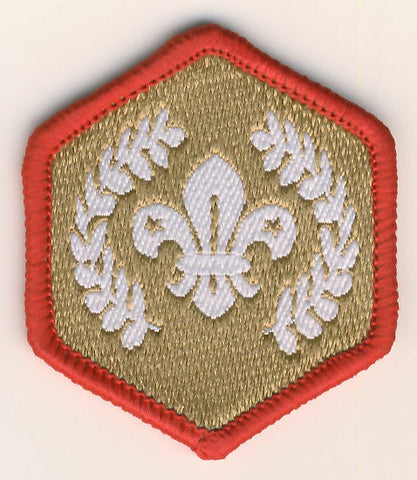 Gold Chief Scout Award