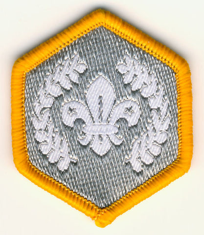 Cub Silver Chief Scout Award