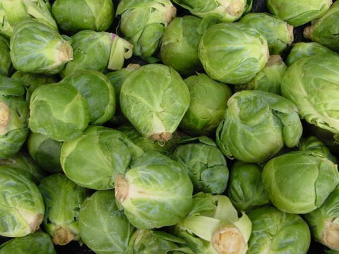 Brussels Sprouts, Long Island Improved   #3007   CO2