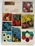 VTG 1962 Park's Flower and Seed Book Catalog Color Brochure 92 Pages Reference