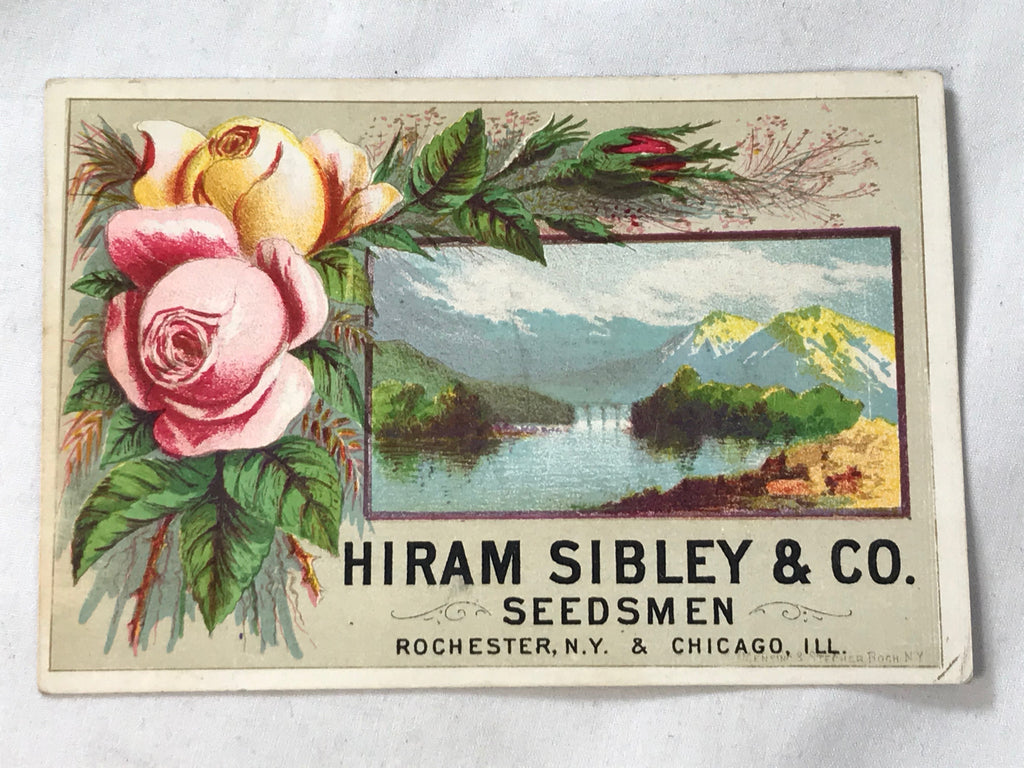 Victorian Trade Card Hiram Sibley & Co Seedsmen Rochester NY Chicago ILL - Cabin Fever Purveyors