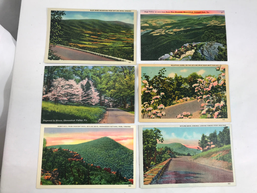 Skyline Drive Blue Ridge Mountains Shenandoah Valley Postcard Unposted Lot of 6 - Cabin Fever Purveyors