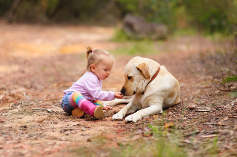 child playing with dog outside
