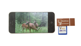 BuckStruck Card Reader for Apple iPhone iPad and iPod - BuckStruck Outdoors