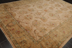 9x12 Beige, Sage, Rust Color Hand Knotted Persian 100% Wool Peshawar Traditional Oriental Rug