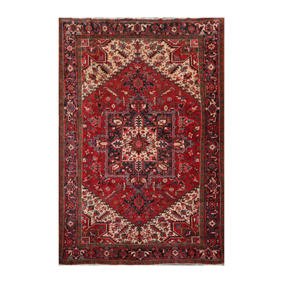 8' x11'  Red Ivory Charcoal Color Hand Knotted Persian 100% Wool Traditional Oriental Rug