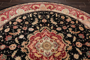 Oriental Area Rug Hand Tufted New Zealand Wool & Silk Traditional 45-2005 (8'x8')