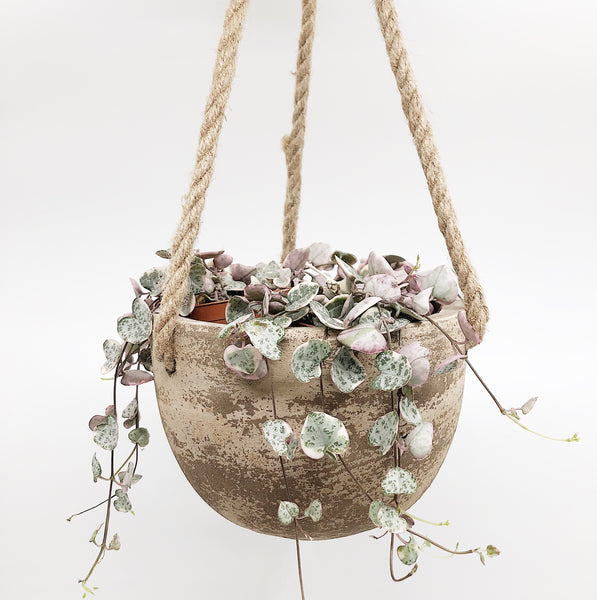 Clay Hanging Planter