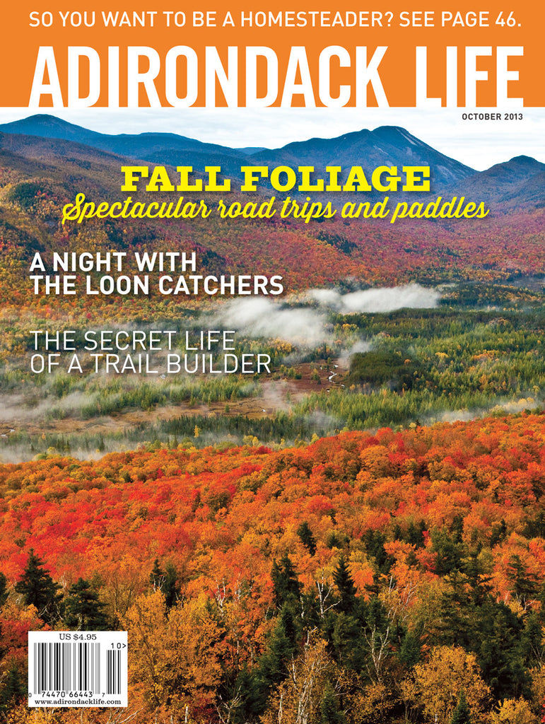 September/October 2013 issue - Loons