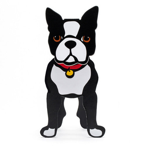 Boston Terrier Pop-Out!