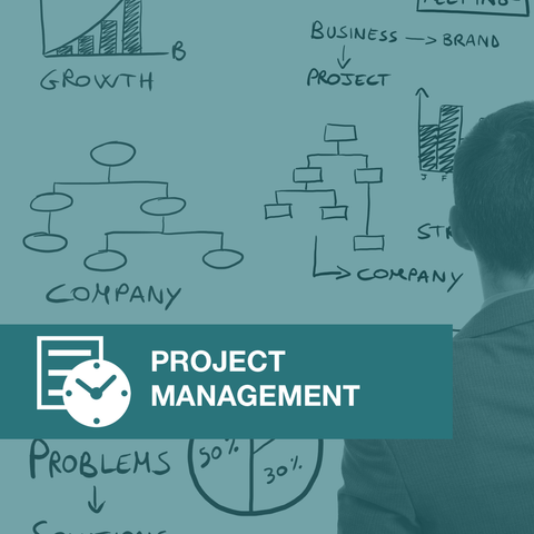 Implementing Project Management Systems