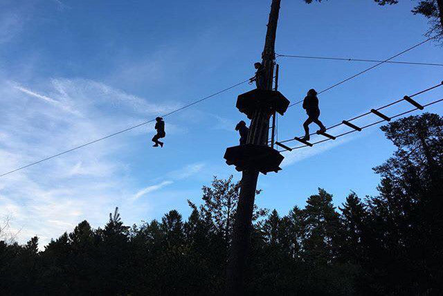 Go Ape Newcastle