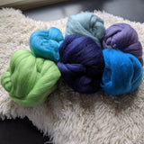 Legend of Squee! Merino Color Pak - 6 oz