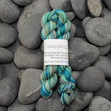 Discourse Mini Skeins - 100 yd - 100% Superwash BFL Sock