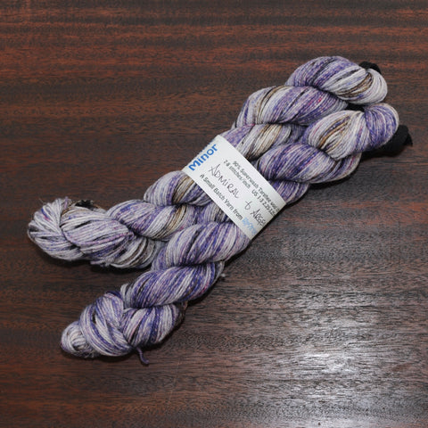 Double Minor SW Targhee Nylon Sock Yarn - Admiral and Argent - 100g