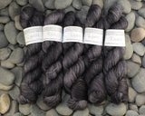 Raven on Extra Credit SW BFL Nylon Sock yarn