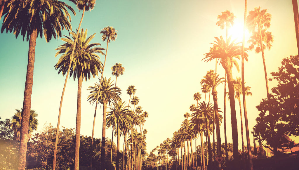 Ottawa to L.A - $369.00 CAD (Roundtrip Incl Tax | Dubai for $685.00)