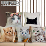 "Custom Print Cute Kitty Cushion Cover 17""x17'' ~ 65% Off!"