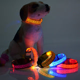 Illuminated Led Collar For Your Best Friend for Safety of Your Pets