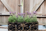 Alloro Planter Box Detail 1