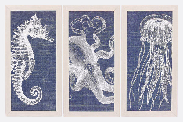 Créatures de la Mer Set of 3 Framed Art